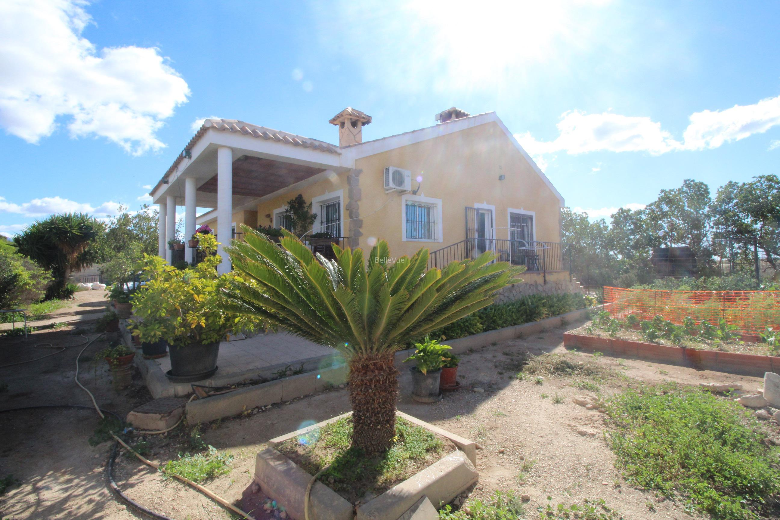 Wonderful villa with a guest house and 28 stable in Mutxamel, Alicante